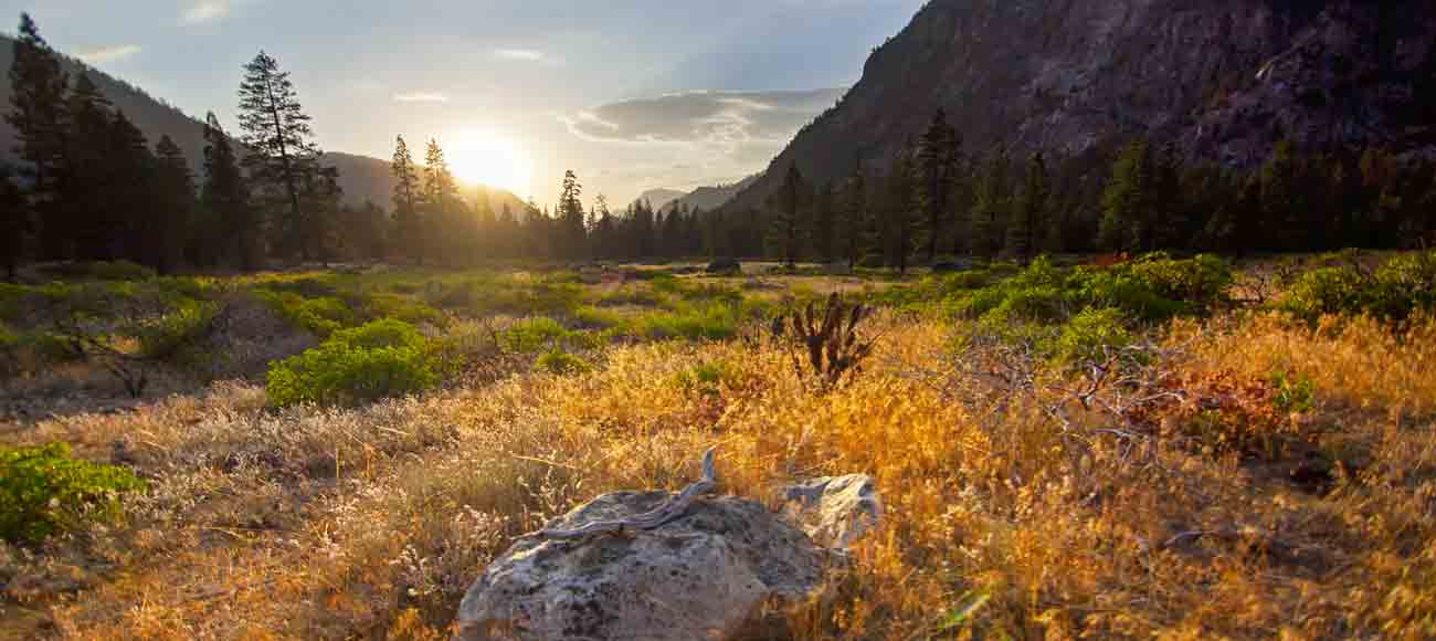 meadow in a valley at sunset